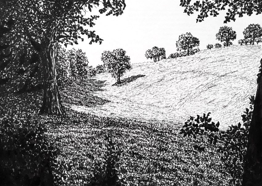 Pen drawing of a landscape and shadows