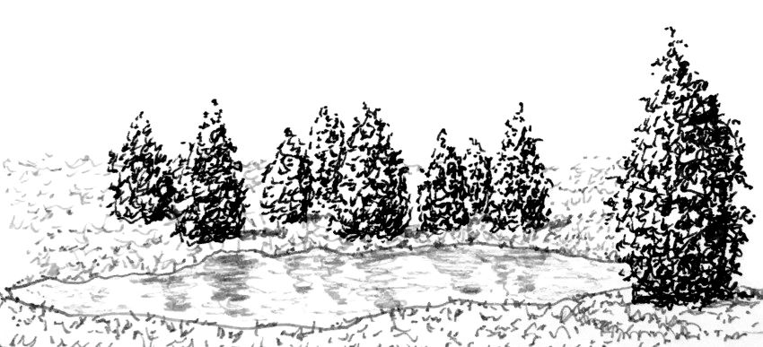 Foreshortening drawing of a lake