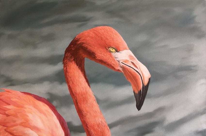 Realistic flamingo oil painting