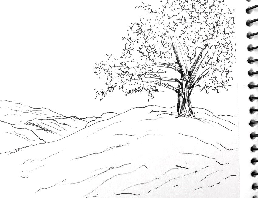 Initial sketch for tree drawing