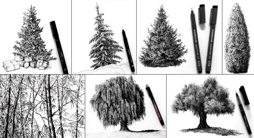 Pen drawings of trees