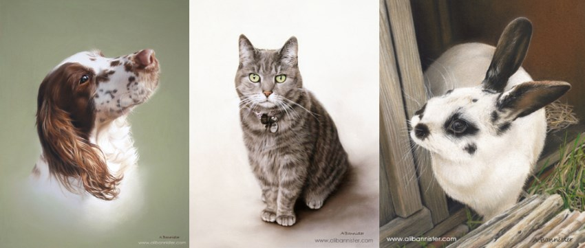 Pet portrait paintings by Ali Bannister