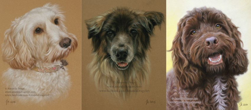 Pet dogs portrait paintings by Amanda