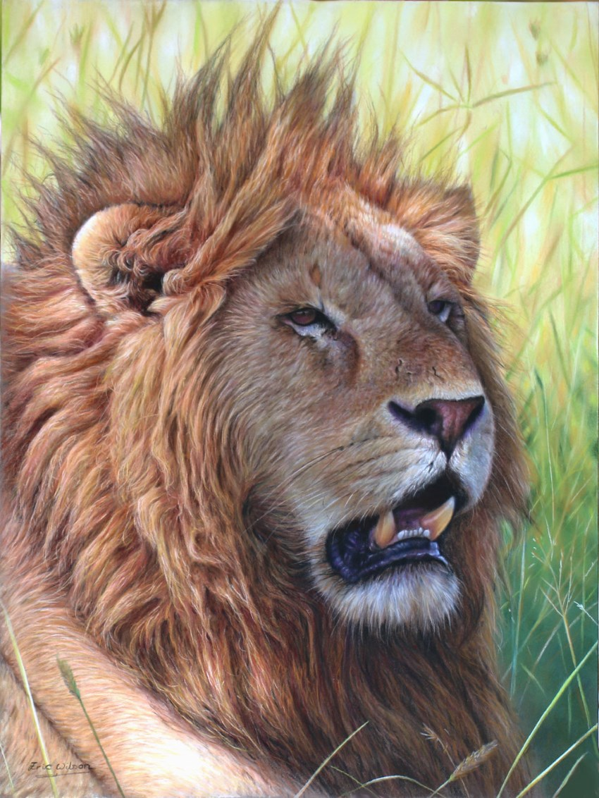 Lion painting by Eric Wilson
