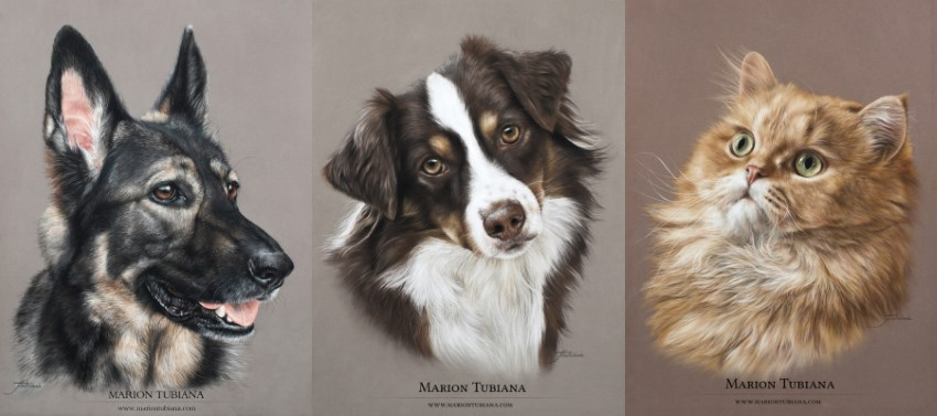 Pet portrait painting by Marion Tubiana