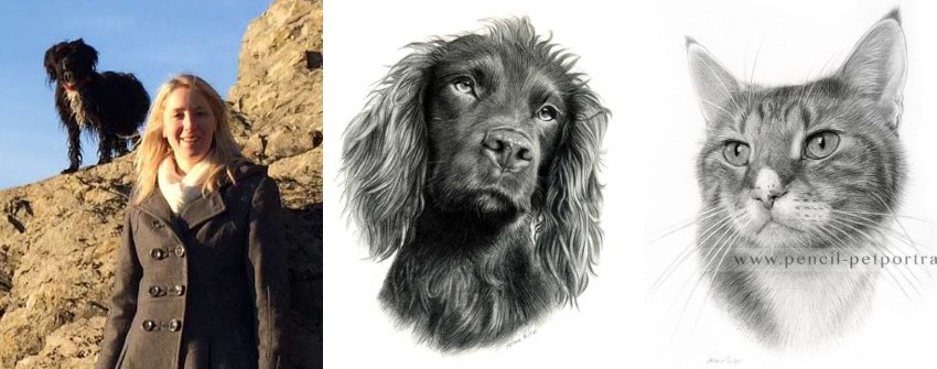 Cat and dogs portraits by Melanie Phillips