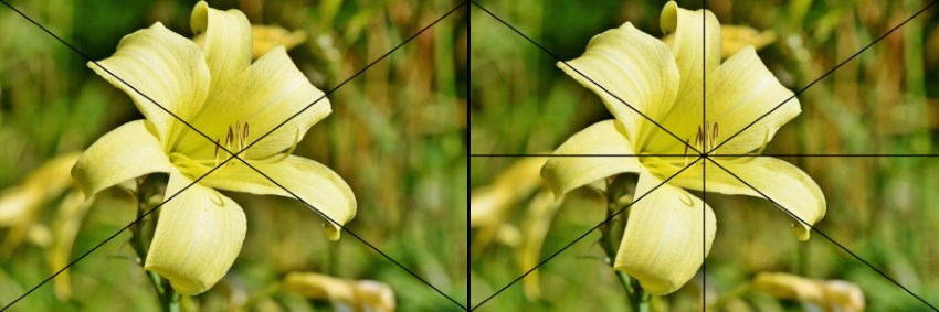 Finding the center of an image