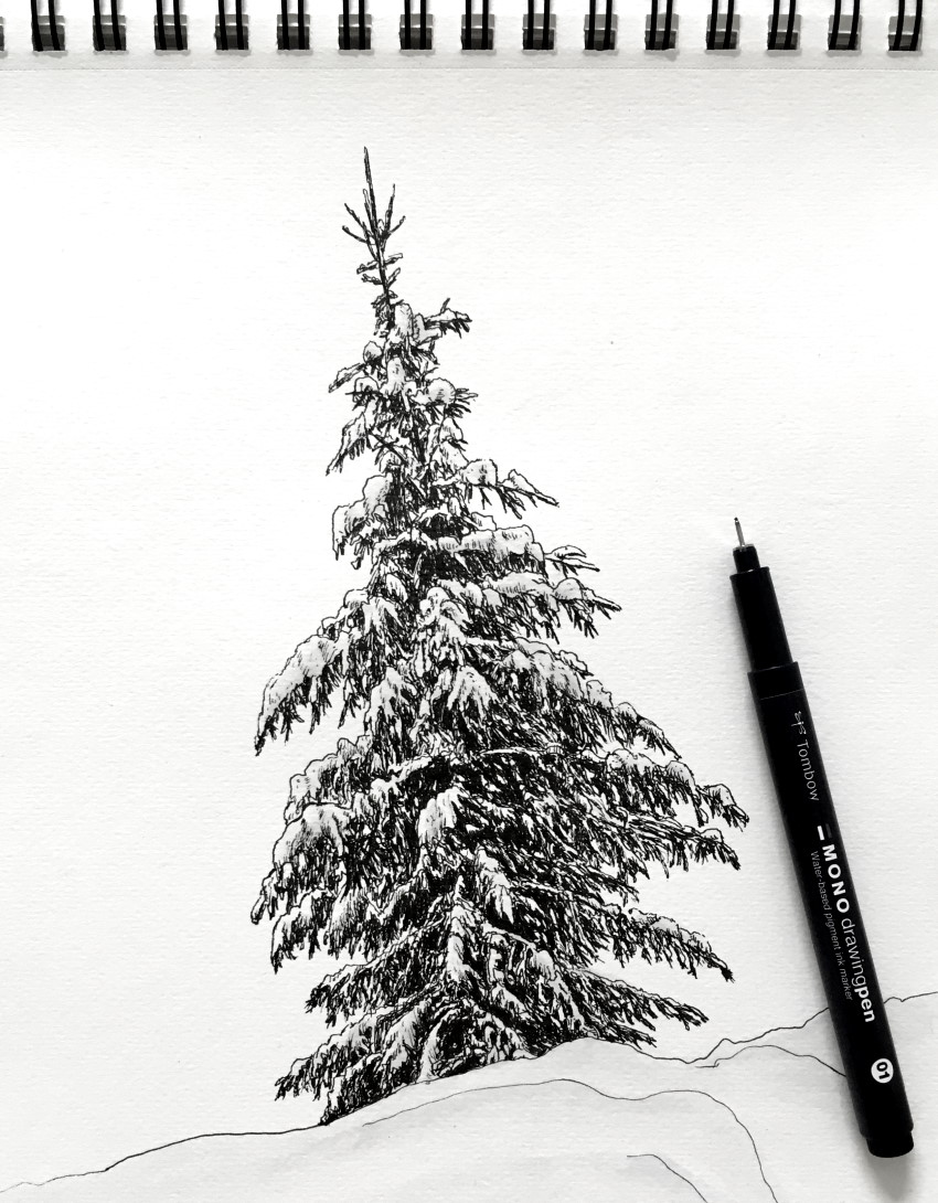 How To Draw Realistic Trees With Pen Ink Ran Art Blog