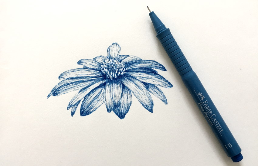 How To Draw Any Flower With Pen Ink Ran Art Blog